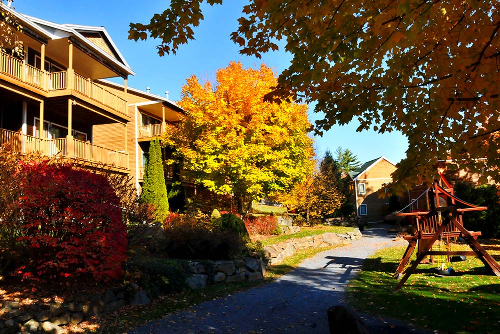 townhomes and playset during fall