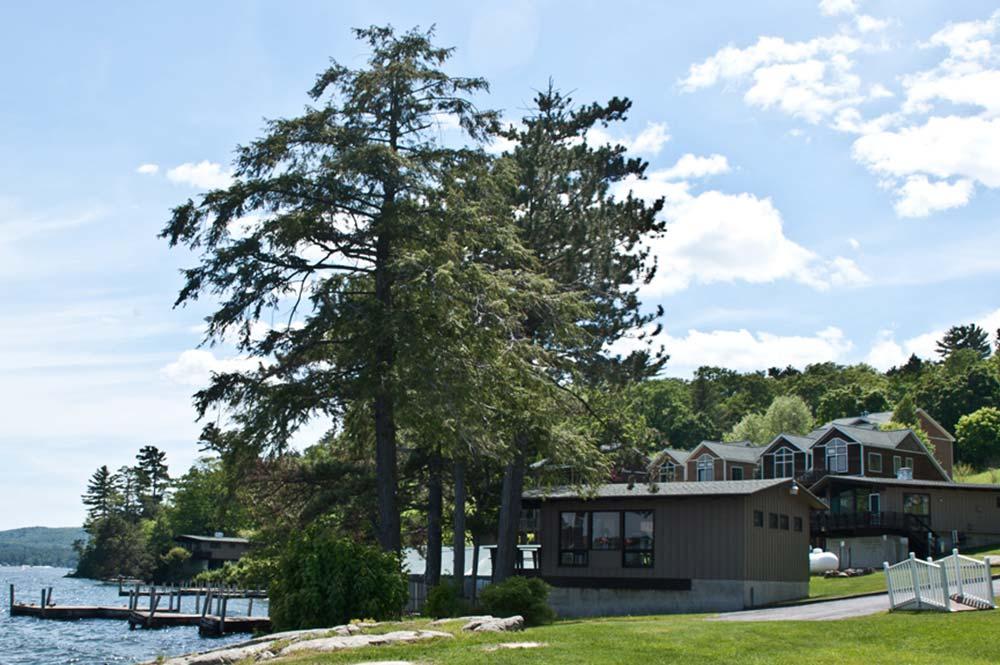 Lake side villas among trees