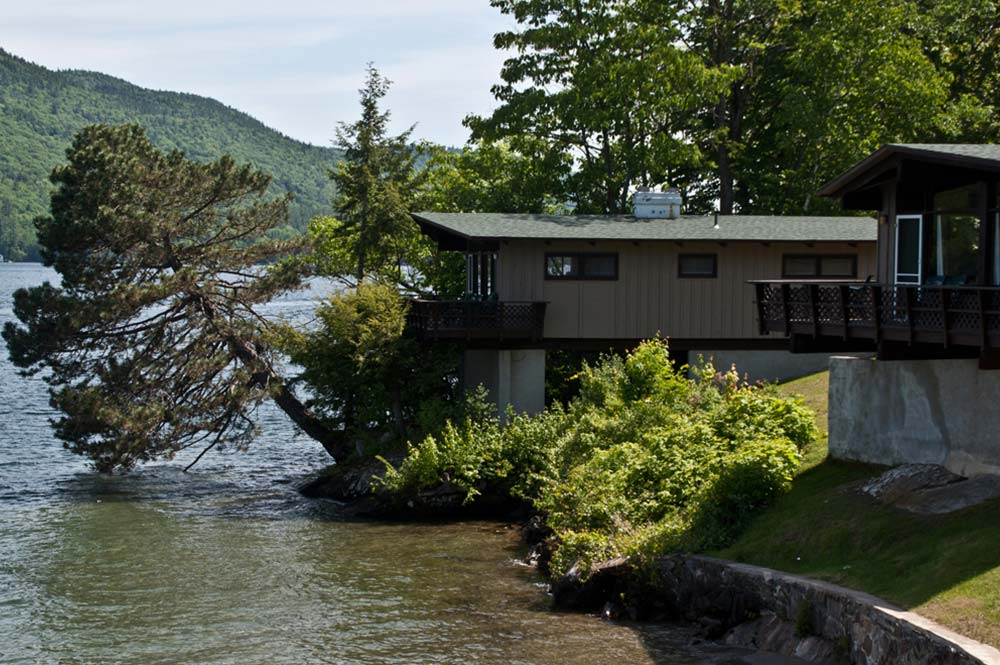 Villa on lake shore with large tree angled out over lake